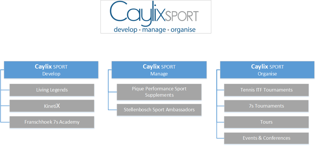 Caylix Organogram for every department